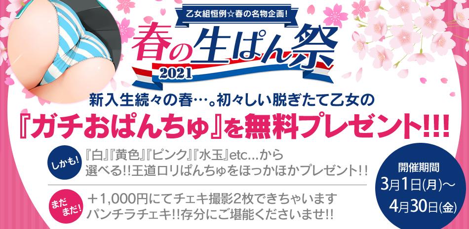 春の生ぱん祭り☆無料プレゼント